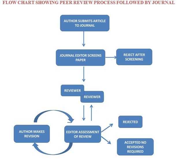 process essay peer review
